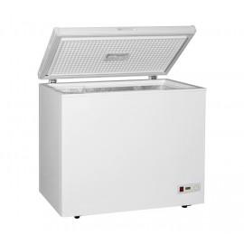 Congelatore a Pozzetto